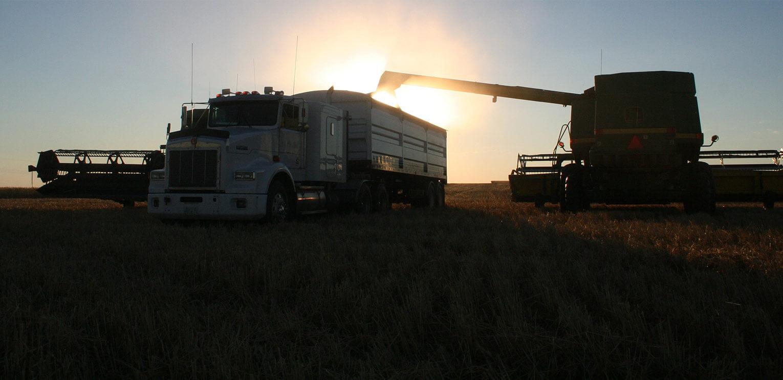 agriculture et soleil